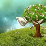 Strom s penězi